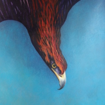 'Golden Eagle Dive' 160cm x 113cm Oil on canvas