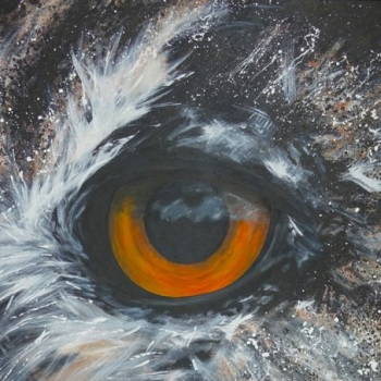 'Owl Eye' 153cm x 102cm Acrylic on canvas