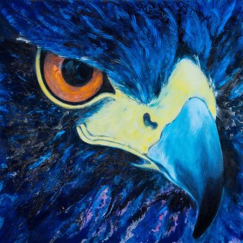 'Head of Young Golden Eagle' 122cm x 122cm Acrylic on canvas
