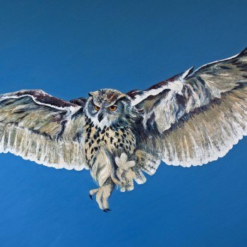 'Eagle coming in to land' Oil on canvas 140cm x 200cm