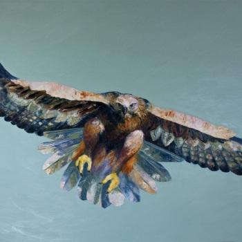 'Steppe Eagle full flight' Oil on canvas 140cm x 200cm