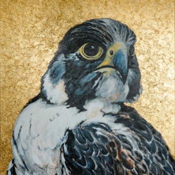 'Peregrine falcon golden icon' Mixed media 122cm x 91cm