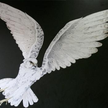 'White Gyr Falcon' Oil on canvas 140cm x 160cm