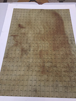 5 metre tall portrait of Leonardo in 500 pieces